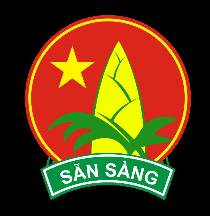 unnamed file 6 - Bài văn mẫu cảm nhận của em về Đội Thiếu niên Tiền phong Hồ Chí Minh