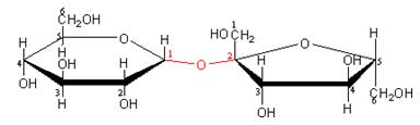 cong thuc hoa hoc cua duong fructozo glucozo saccarozo 3 - Công thức hóa học của đường fructozo, glucozo, saccarozo