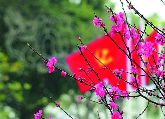136 - Biểu cảm về mùa xuân