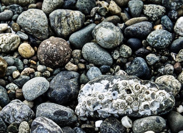 """176 - Chứng minh câu tục ngữ """"Nước chảy đá mòn"""""""